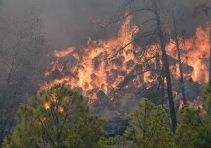 Bastrop Wildfire, 2011