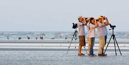 Birders at the beach, image Texas Parks and Wildlife