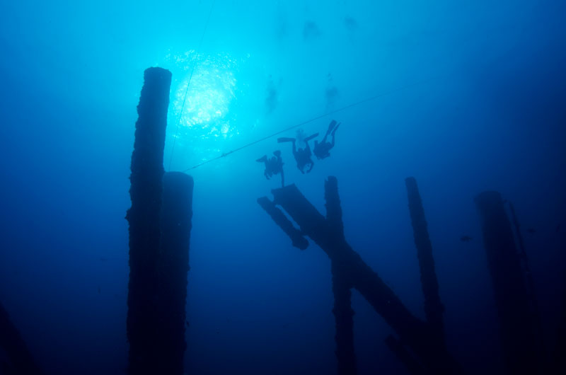 Divers exploring artificial reef in Texas Gulf
