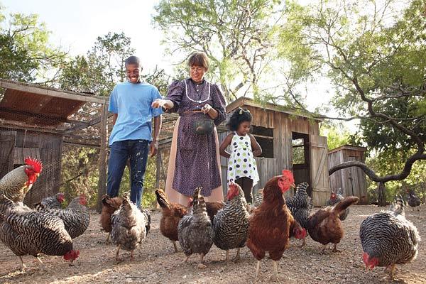 Sauer Beckmann Living History Farm