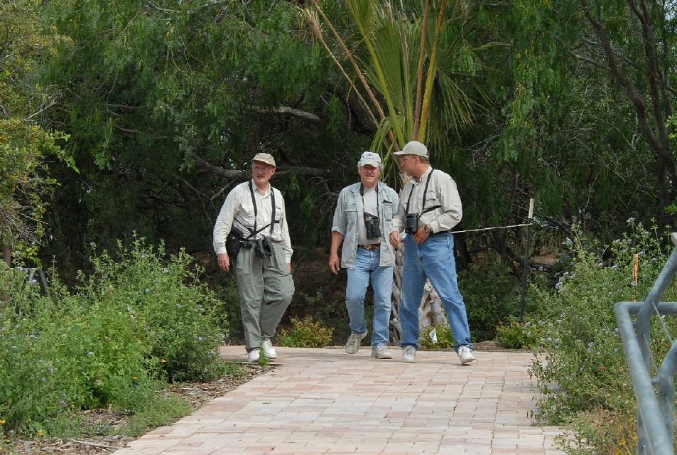 Birding in Weslaco in the Rio Grande Valley