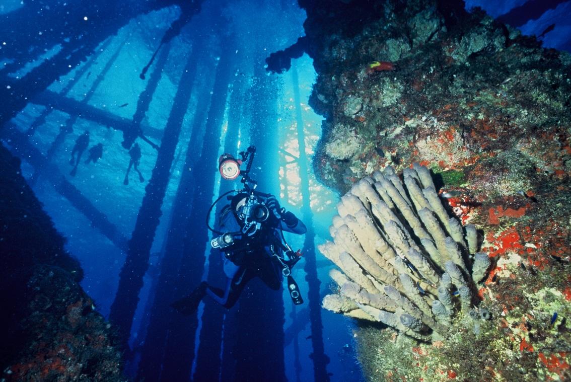 Diving near an artificial reef.