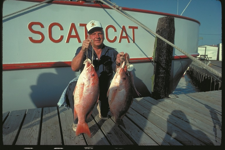 Nice looking red snapper.