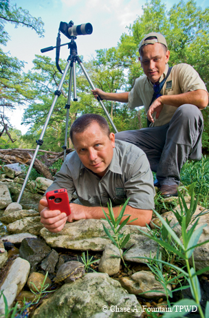 Herpetologist, Andy Gluesenkamp (with phone) and biologist Cullen Hanks monitoring species.