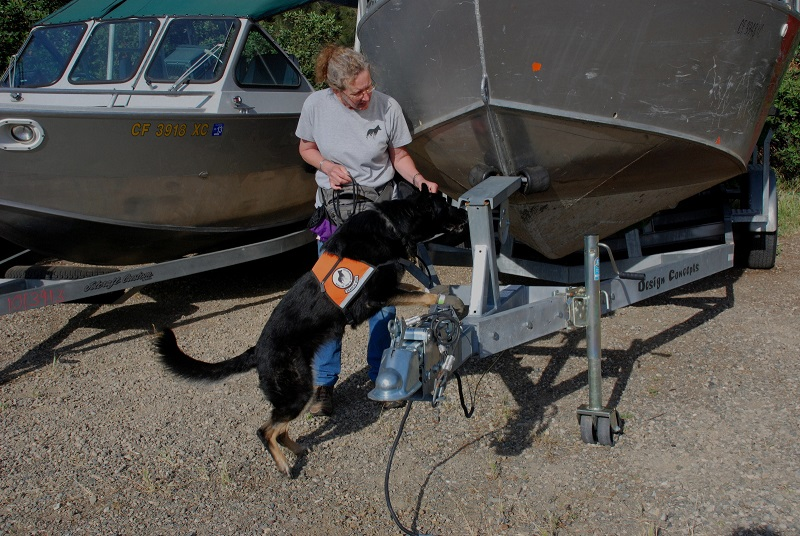 Alice Whitelaw and Tia, inspecting boats for zebra mussels in California