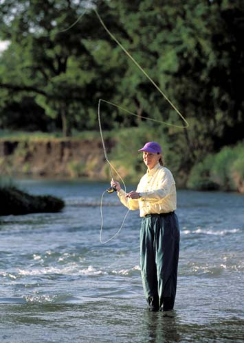 Maybe you can fly fish for white bass