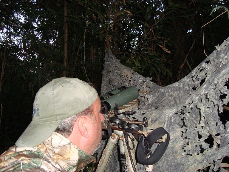 Cliff Shackelford focused on a roost-hole of a rare woodpecker in Argentina in 2013.