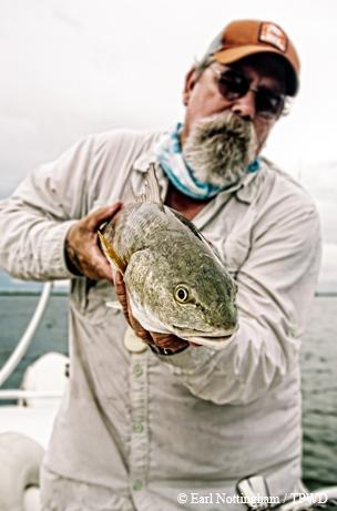 Bay fishing success.