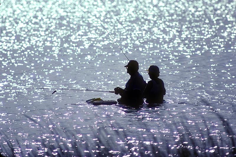 Goose Island_924_800p-wade-fishing