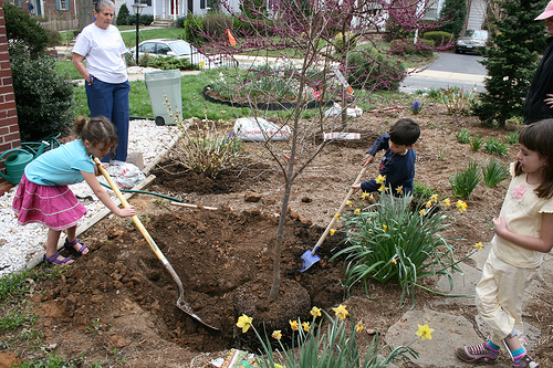 by Tree planting photo by woodleywonderworks via Flickr, Creative Commons