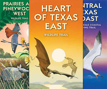 Wildlife Trails Maps from Texas Parks and Wildlife, available for purchase or free digital download.
