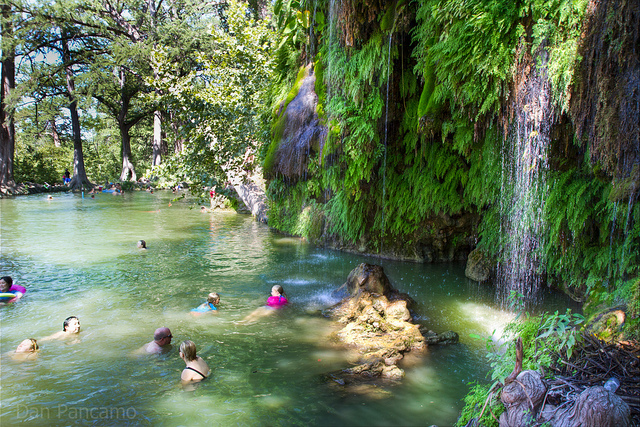 Passport to texas blog archive krause springs near for Fishing spots in austin