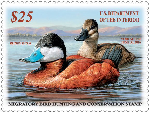 2015-16 Federal Duck Stamp