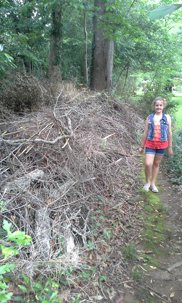 Cliff Shackelford's daughter Robin standing next to their backyard brush pile.