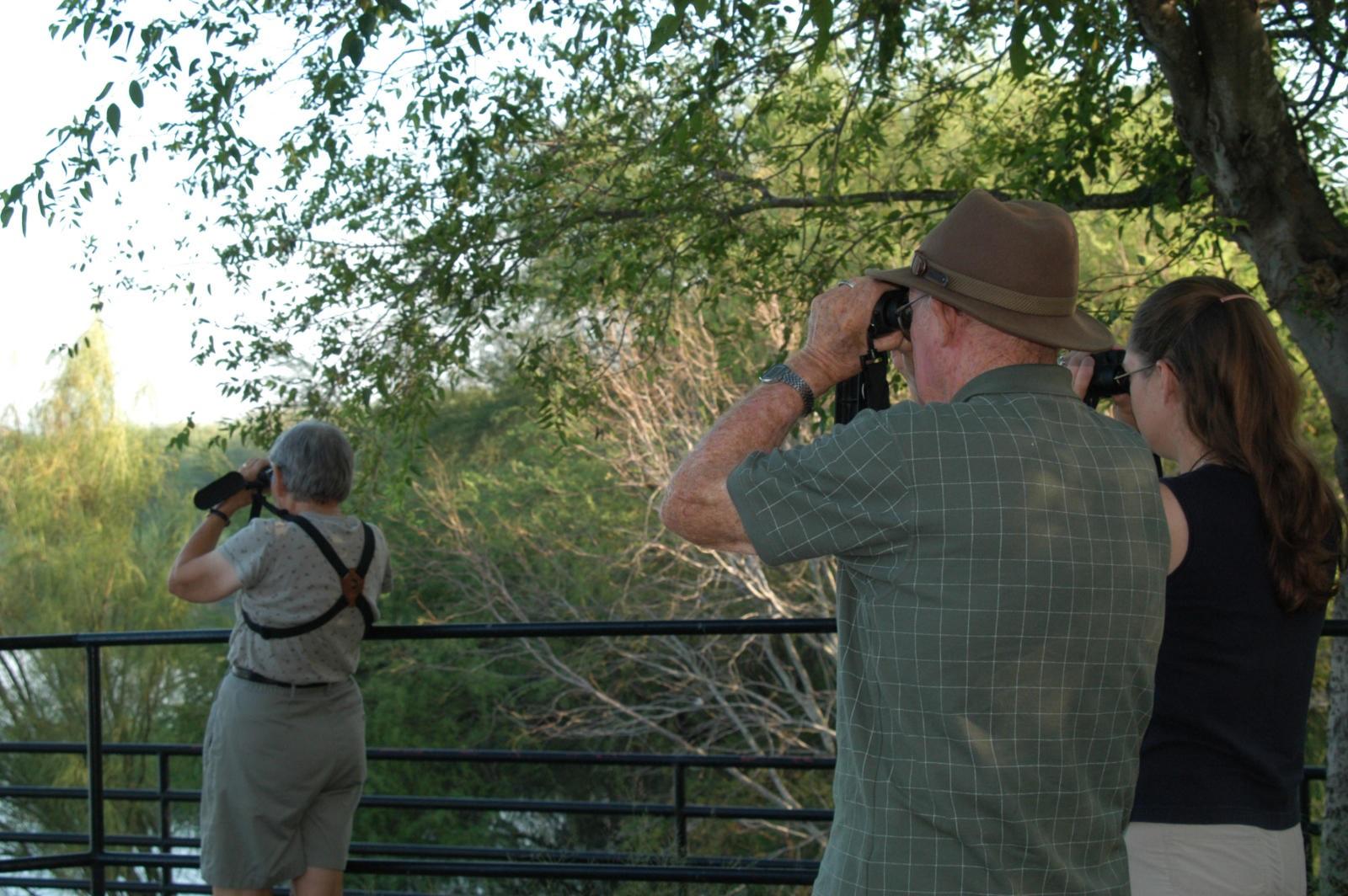 A fine vantage point for birding.