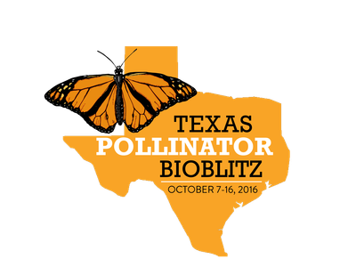 Save the Pollinators