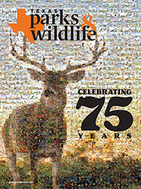 Texas parks and Wildlife Magazine covers from 75 years.
