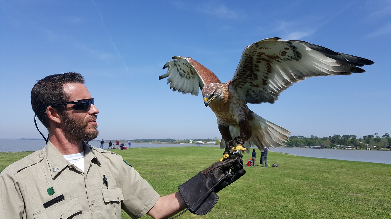 Joel making friends with a falcon.