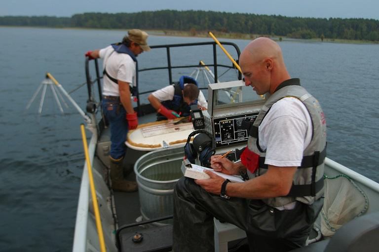 Todd Driscoll doing field work.