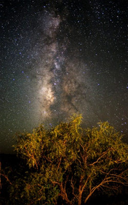 You can see the Milky Way at Big Bend Ranch State Park