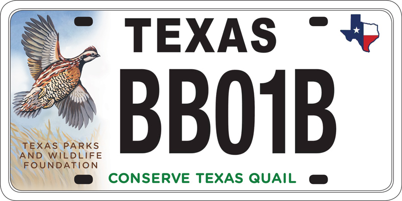 Conservation-quail-plate
