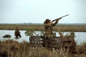 Waterfowl hunting at Guadalupe Delta WMA.